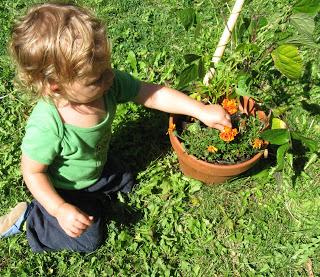 Boy with Flower Pot