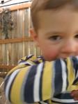 Toddlers Swearing
